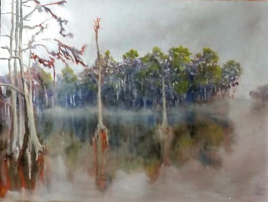 Copy of swamp01